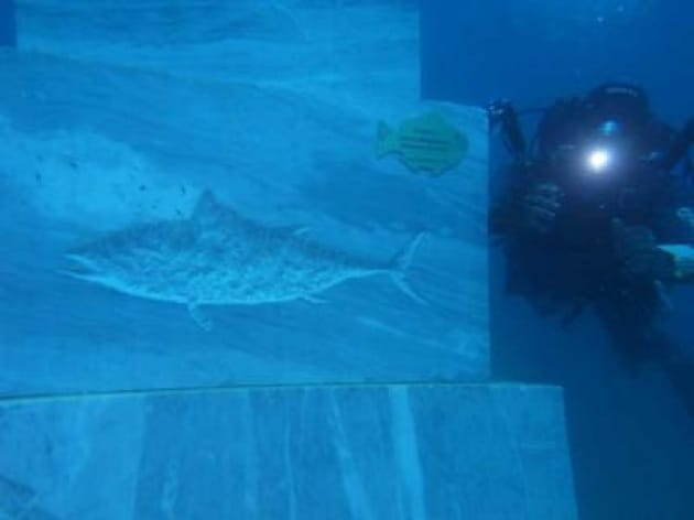 L'arte contro la pesca illegale: sculture sotto il mare della Maremma per salvare i fondali