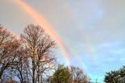arcobleno-quadruplo