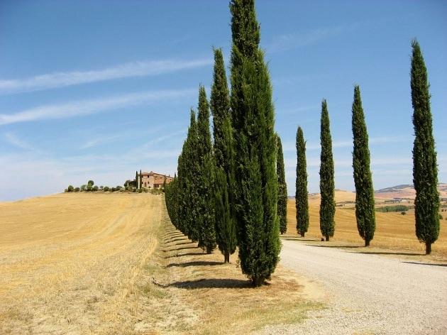 La temperatura media dell'Italia aumenterà di 3,2 °C entro il 2100
