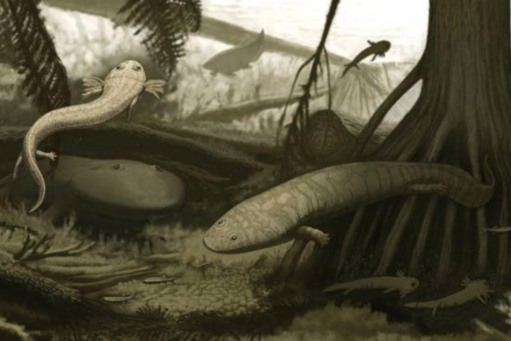 La salamandra con le zanne della Pangea