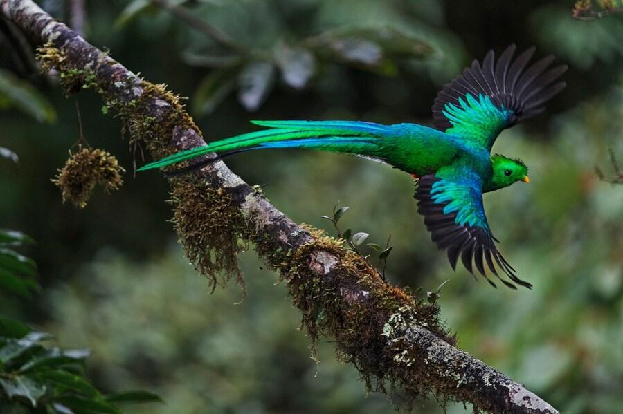 Asferico 2015: le più belle foto di natura