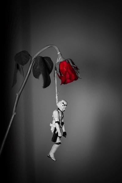 love-kills