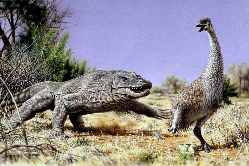 Uova di uccelli preistorici nella dieta dei Sapiens