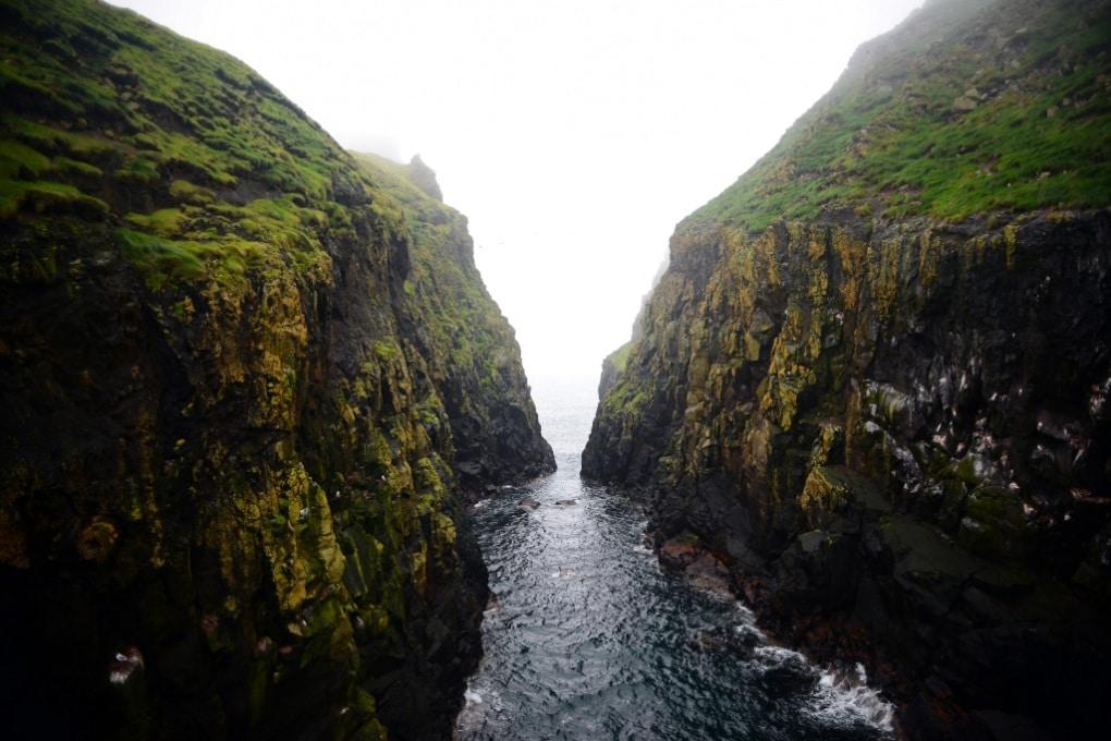 I fiordi sono eccezionali sequestratori di CO2