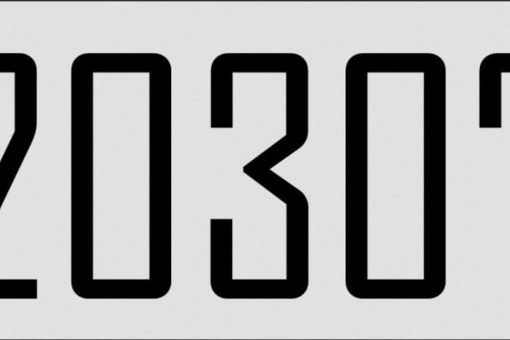 I numeri della Conferenza di Parigi