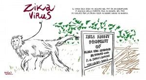 virus zika e microcefalia: storia a fumetti su ciò che sappiamo sull'epidemia e sulla sua diffusione