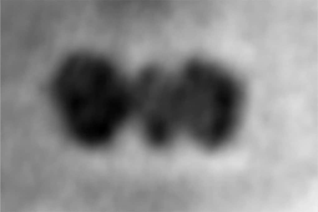 Le prime foto di una singola proteina (grazie al grafene)