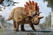 aperturadinosauro