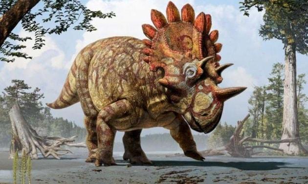 Scoperta una nuova, comica specie di dinosauro