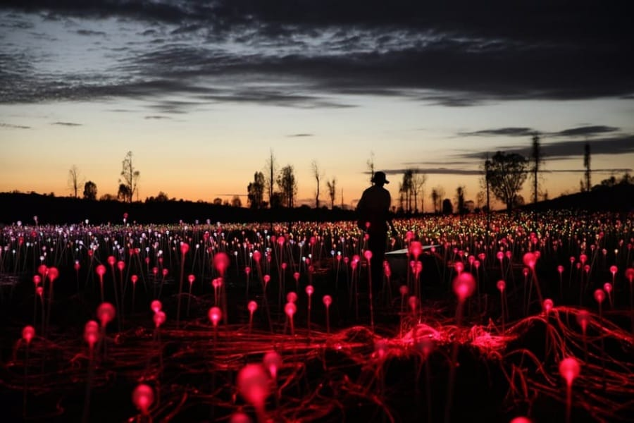 bruce-munro-field-of-light-uluru-5