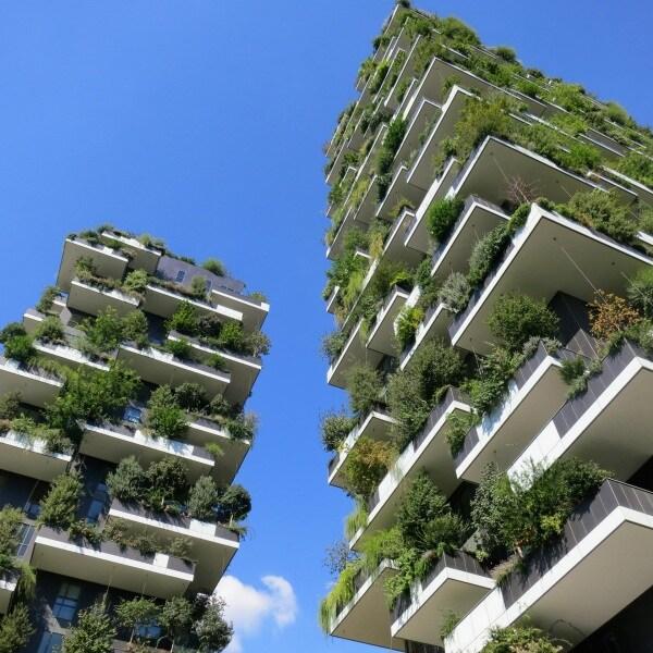 06_karin-standler-urban-forest-garden