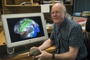 La nuova mappa del cervello umano