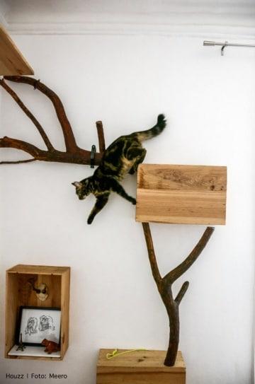 Cani e gatti come figli per loro si modifica anche la for Gatto che starnutisce