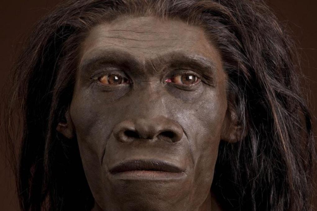 Le più antiche impronte di Homo erectus