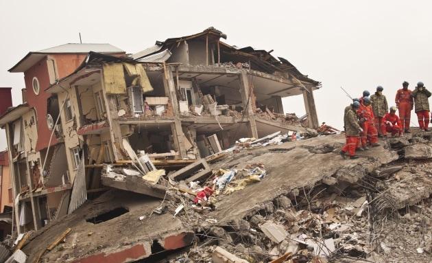In Cina si prova a predire i terremoti con gli animali