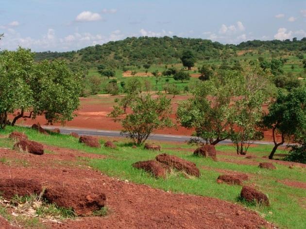 Un Mediterraneo più caldo trasforma l'arido Sahel in un'area più verde