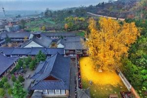 Autunno nello Zhongnan, in Cina