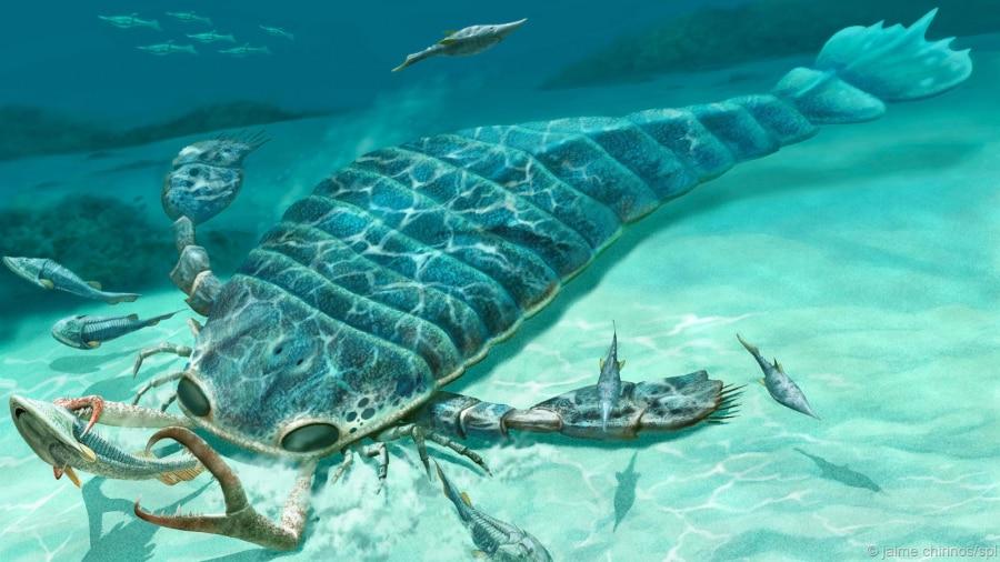 10 animali giganti del passato