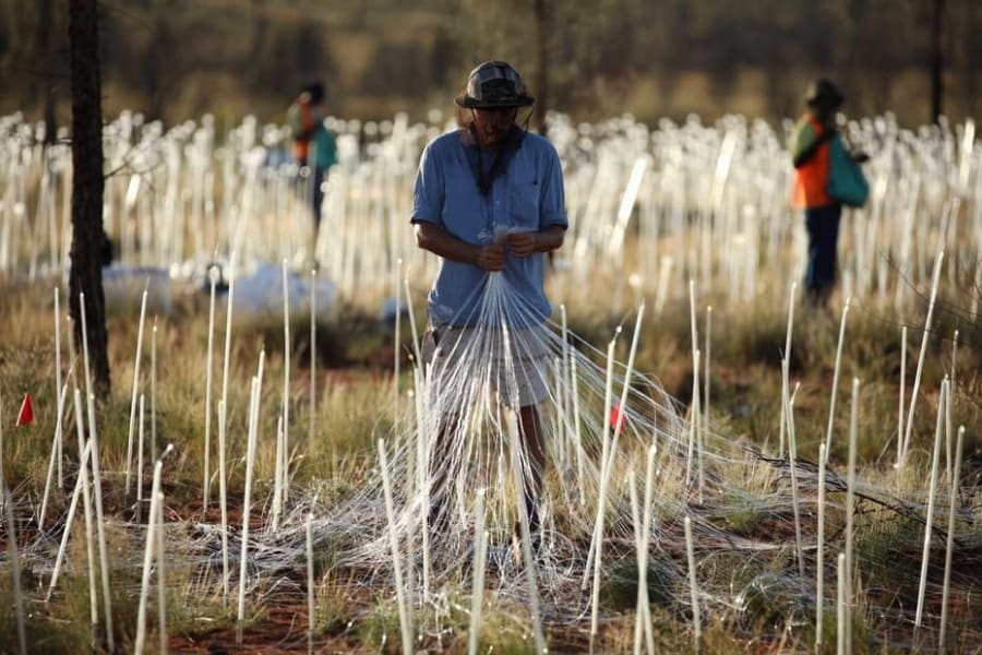 bruce-munro-field-of-light-uluru-13