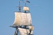 130-cd9-bs3513m-11-sailing_focus_italia_25cm