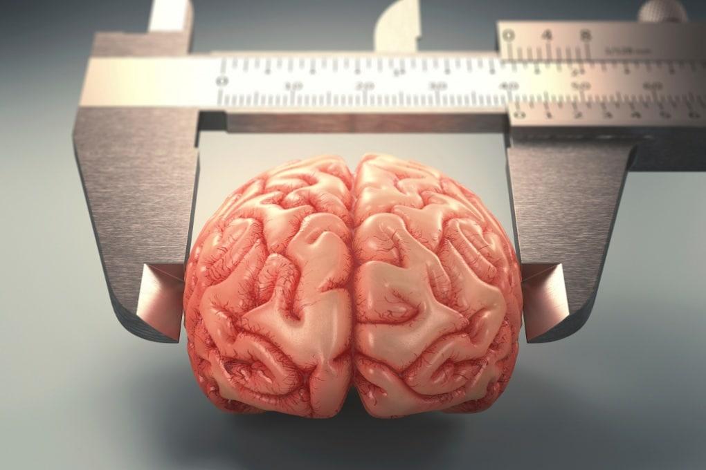 L'uomo vissuto senza il 90% del cervello