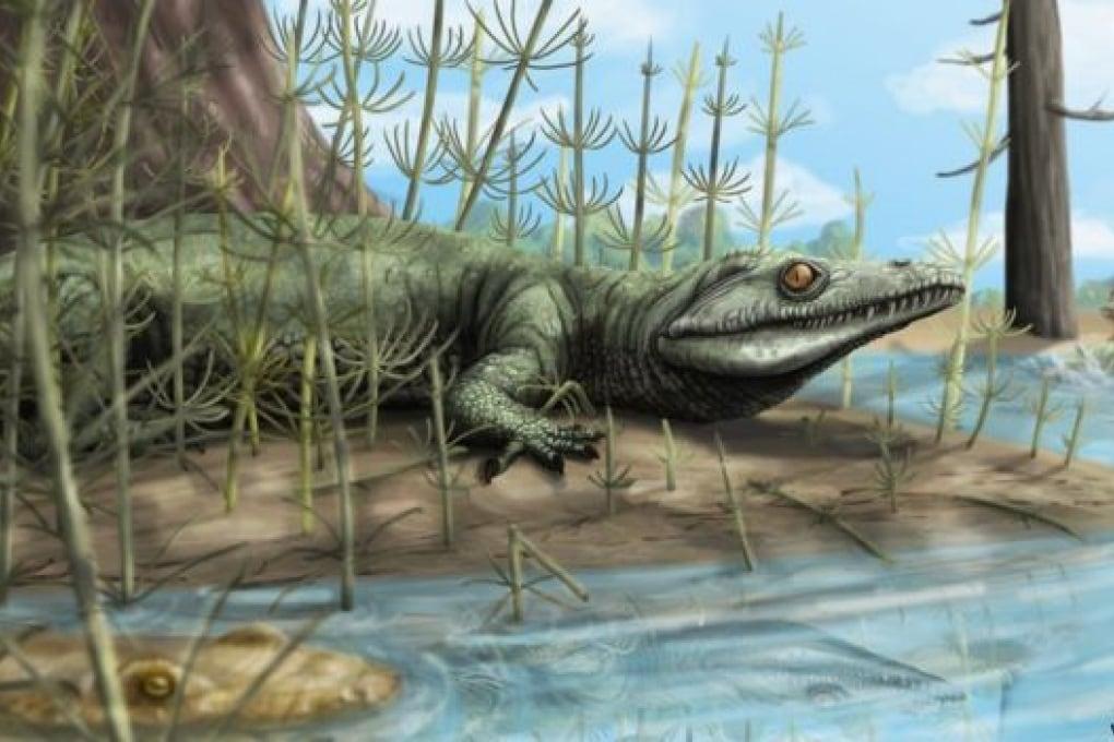 Archosauriformi: un prezioso fossile trovato in Brasile