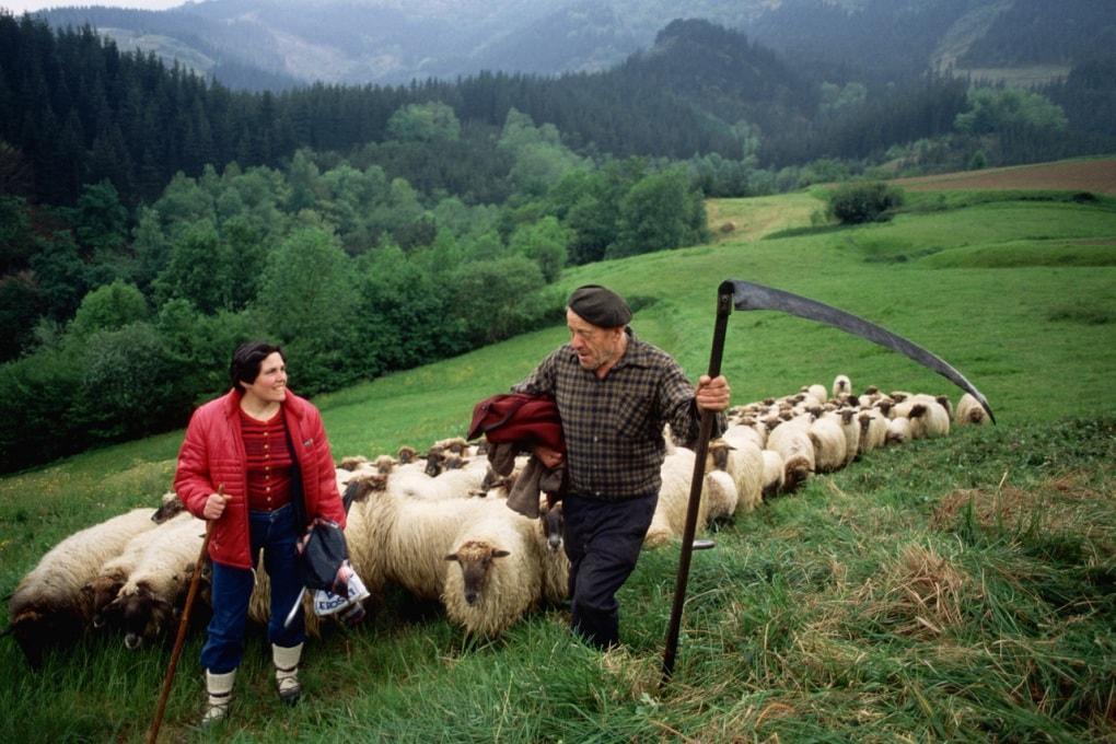 Nuovi indizi genetici sulle origini dei Baschi