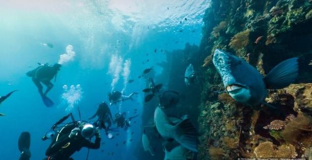 Giornata mondiale degli Oceani con Google Street View