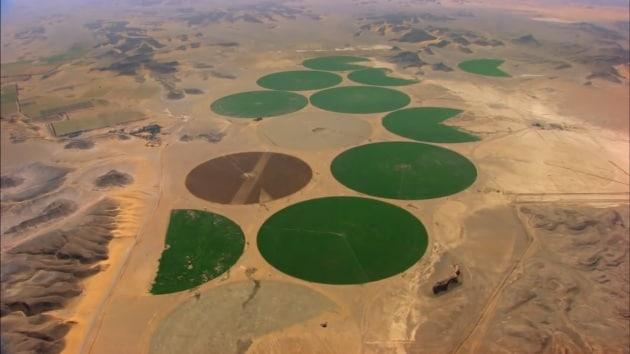 Aumenta la desertificazione del pianeta