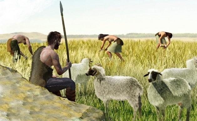 I primi contadini d'Europa provenivano dall'Egeo