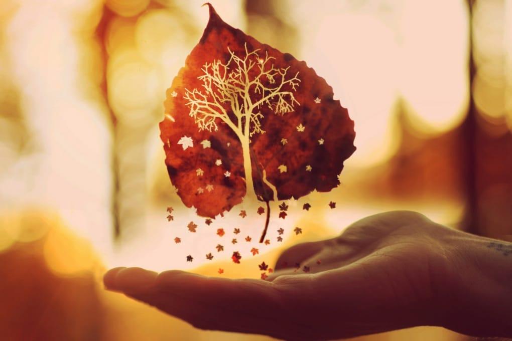 Equinozio d'autunno, 3 cose da sapere