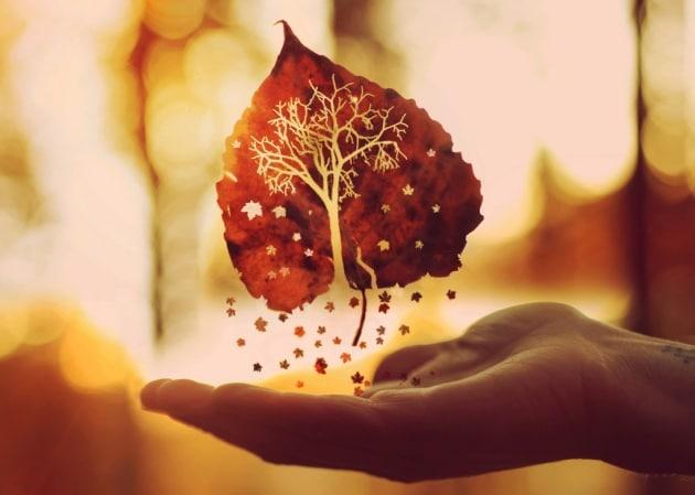 equinozio-d-autunno-2015