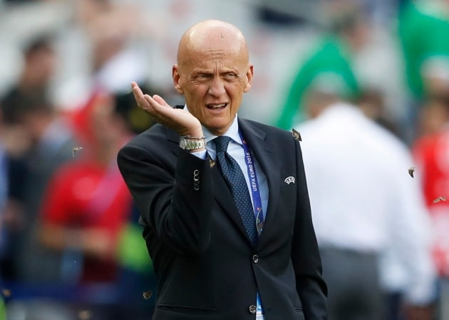 L'invasione di falene alle finali di Euro 2016