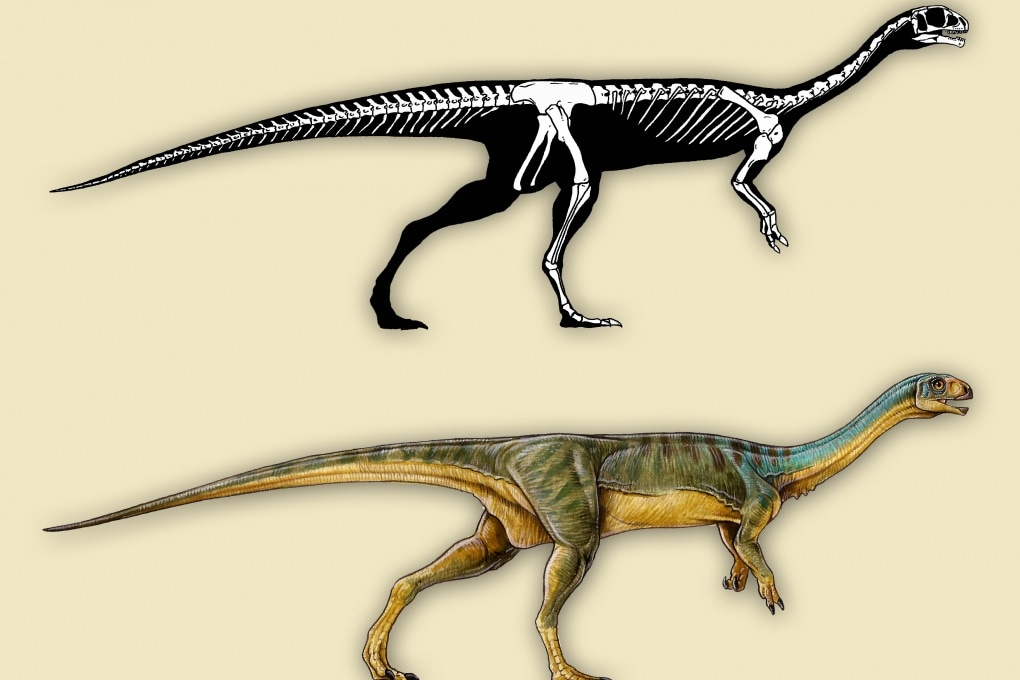 Il dinosauro ornitorinco