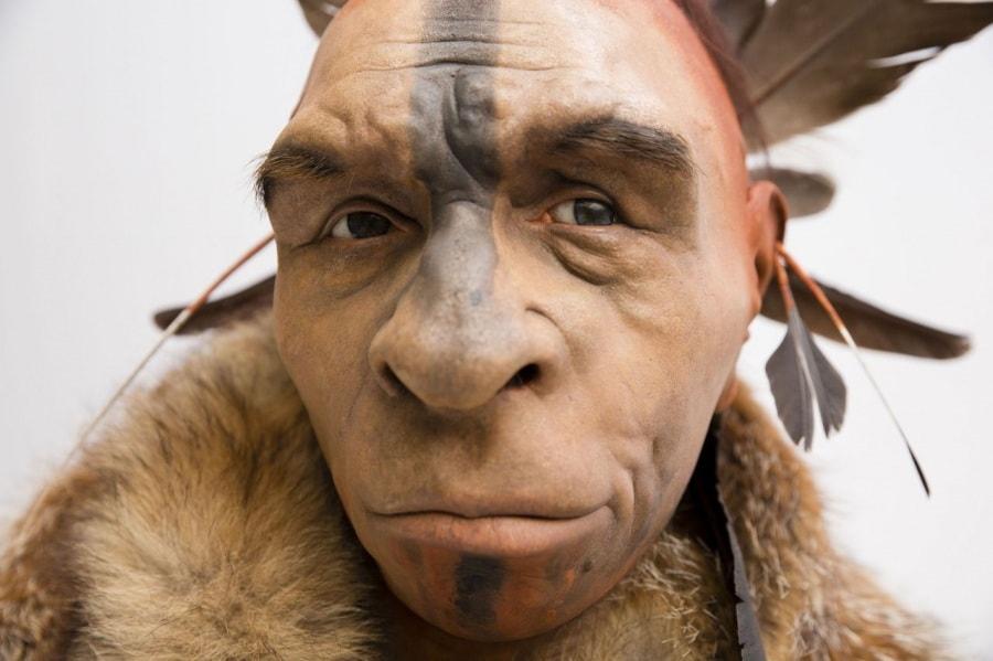 neandertal_1