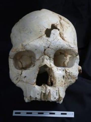 risalente fratture del cranio cultura datazione in Taiwan
