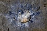 cere1