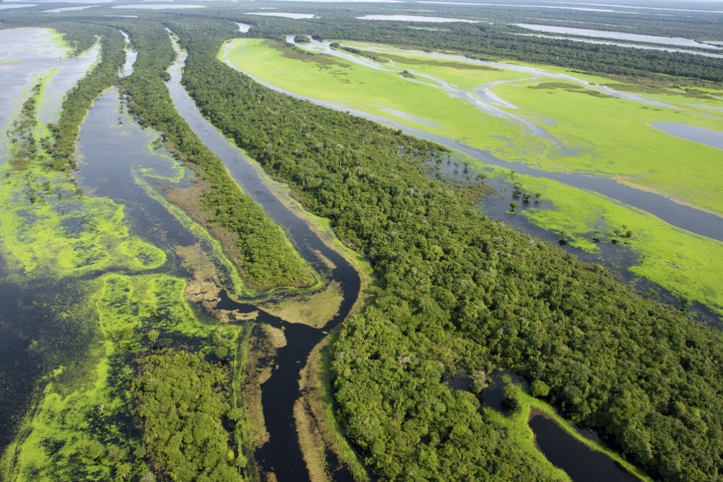 Un decimo di natura selvaggia distrutto in 20 anni