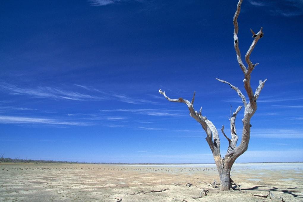 È in arrivo El Niño: può modificare il clima del pianeta