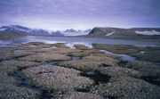 permafrostfeaturesonkvadehukslette