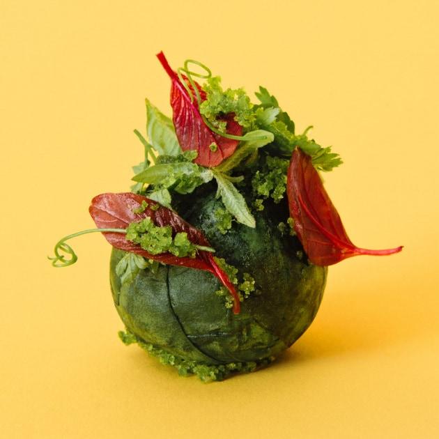 Quando è nata la moda del vegetarianismo?
