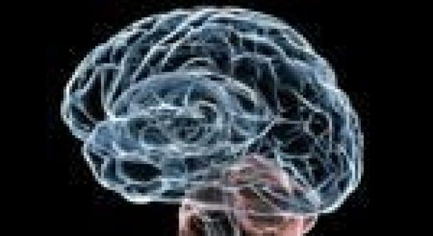 Ricerca: studio Figc su calciatori con paralisi cerebrale