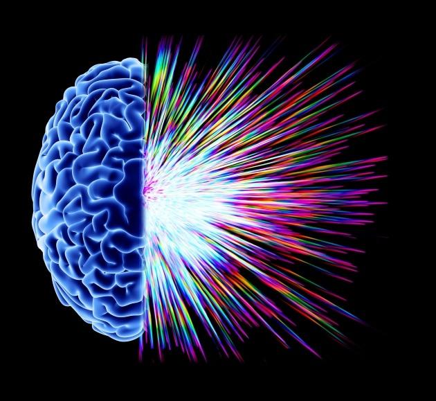 9 fatti inaspettati sull'intelligenza e il QI