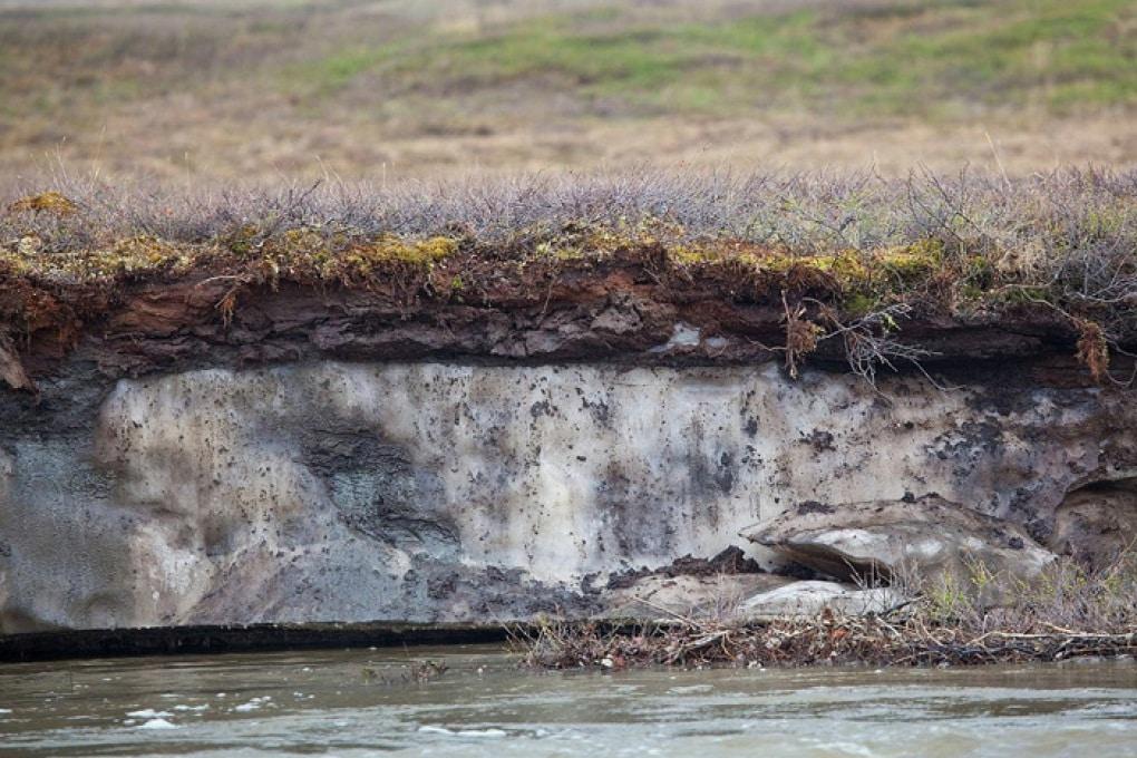 I patogeni sepolti nei ghiacci: virus e batteri possono tornare attivi anche a distanza di millenni