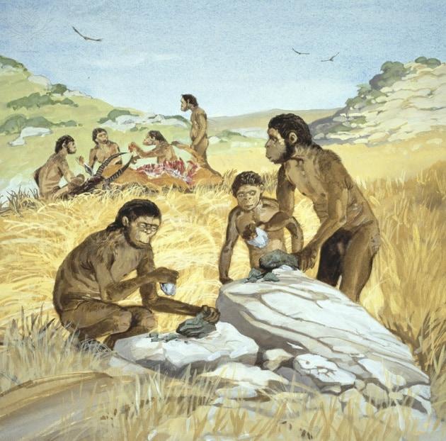 Le diete carnivore dei primi Homo