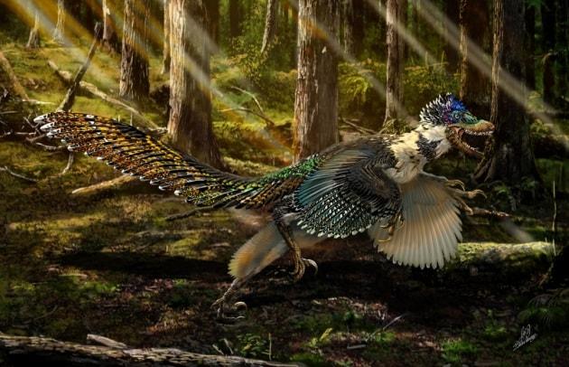 Alcuni dinosauri non ruggivano. Tubavano