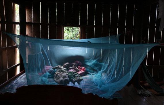 zanzare, plasmodio, malaria