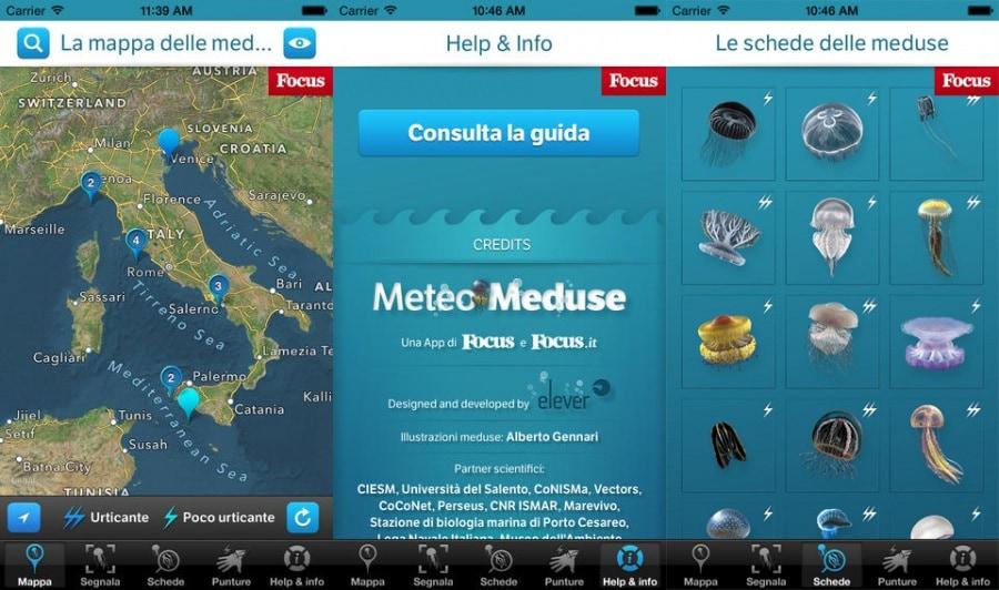 meteomeduse