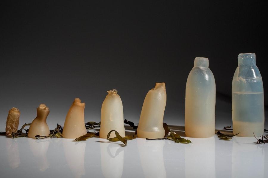 4-algae-water-bottle-ari-jo-nsson-1