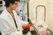 tessuto-cellulare-macchina-zucchero-filato